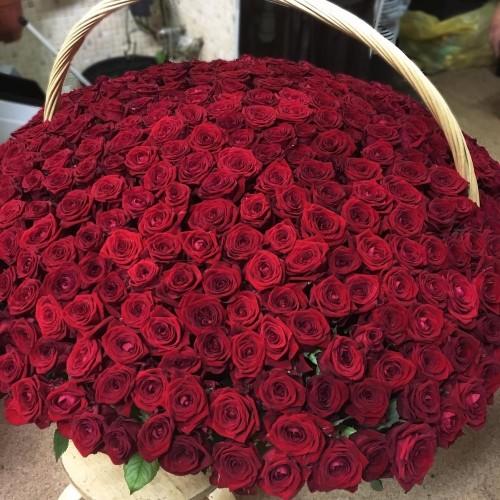 Купить на заказ 1001 роза с доставкой в Шахтинске