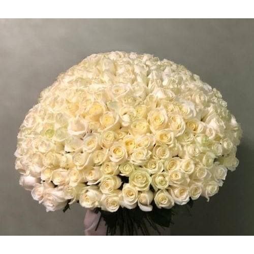Купить на заказ 201 роза с доставкой в Шахтинске