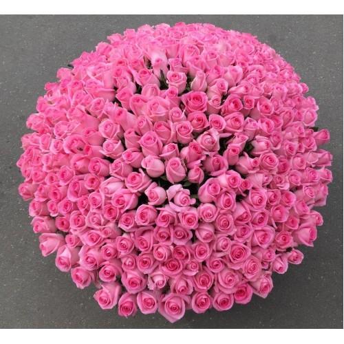 Купить на заказ 501  роза с доставкой в Шахтинске