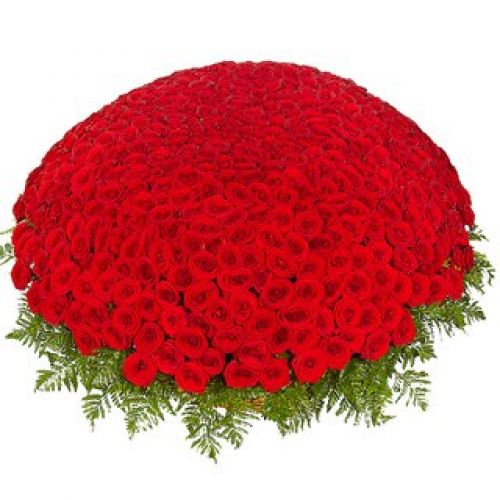 Купить на заказ 301  роза с доставкой в Шахтинске